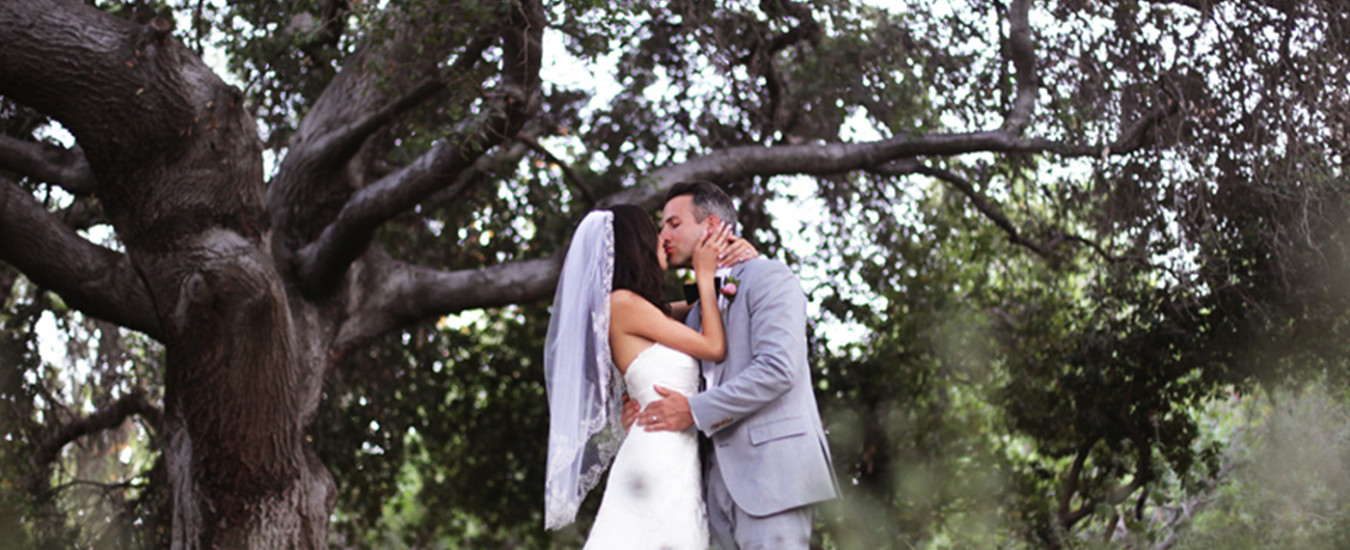 Married couple kissing in front of old tree