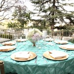 Kellogg House Outdoors - setup with teal table cloth
